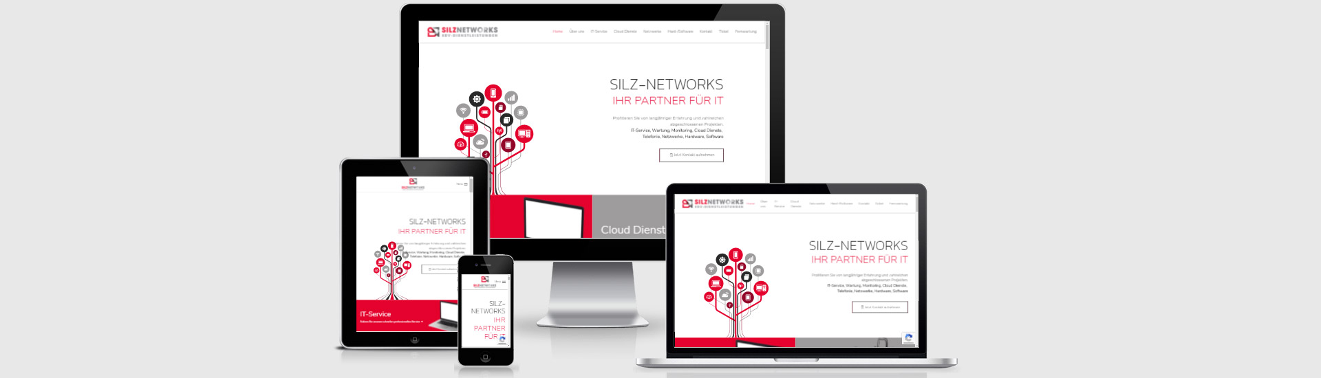 webdesign dieburg silz networks header01